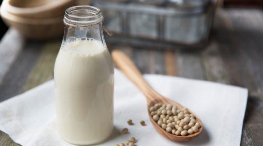 Fresh Homemade Soy Milk