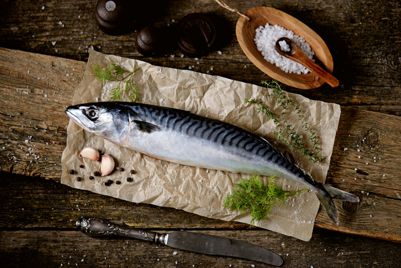 Fresh raw mackerel